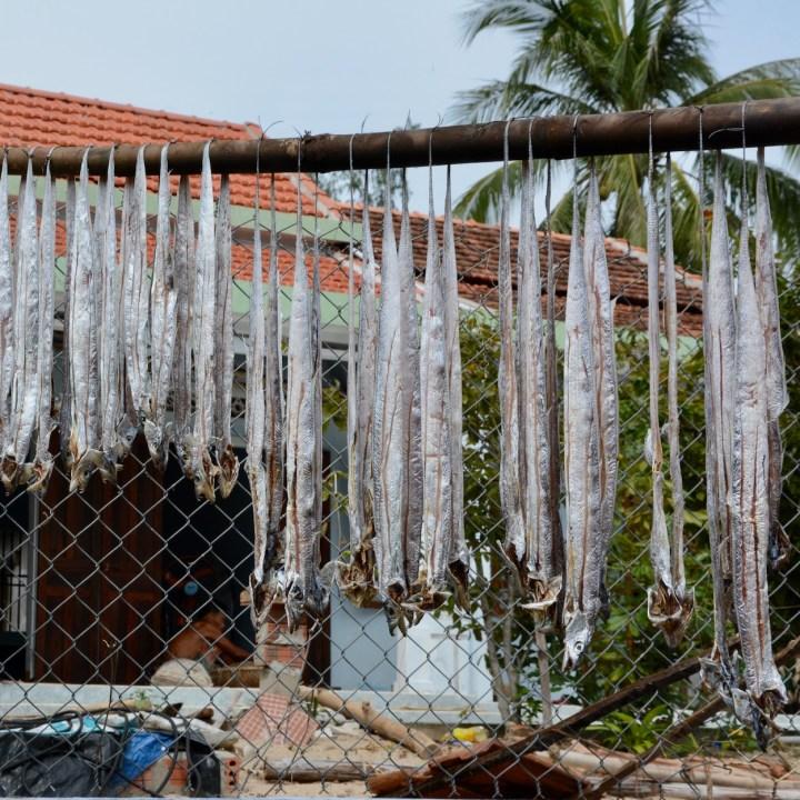 travel with kids vietnam tam than beach fish drying