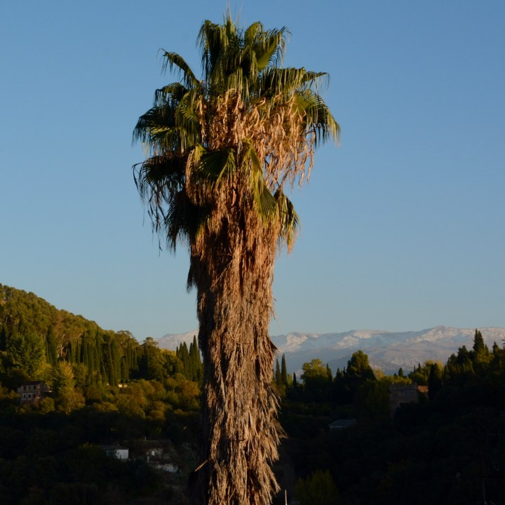 Granada spain with kids snowy mountains