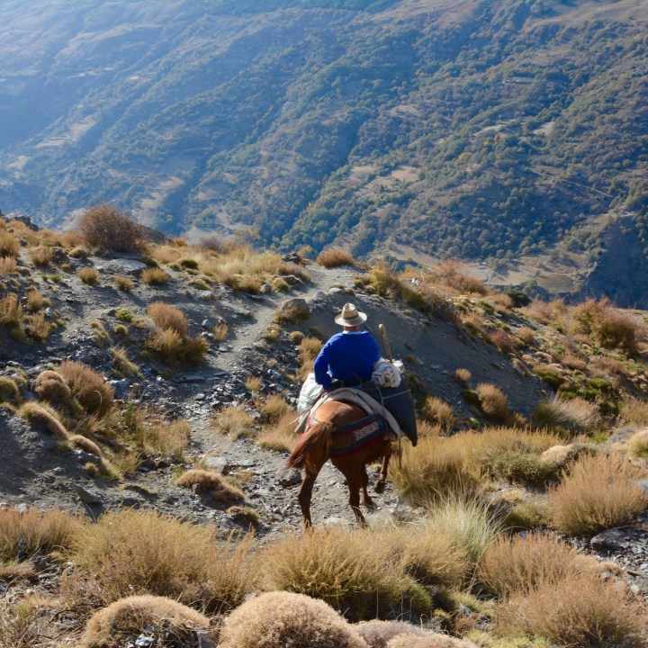 hiking with kids las aplujarras poqueira gorge cowboy