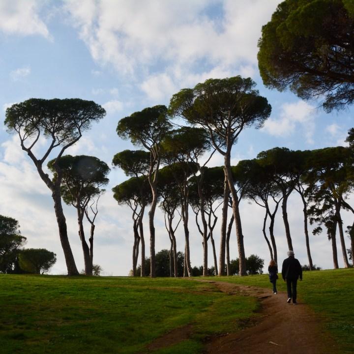 Rome with kids park villa doria pamphili pine trees