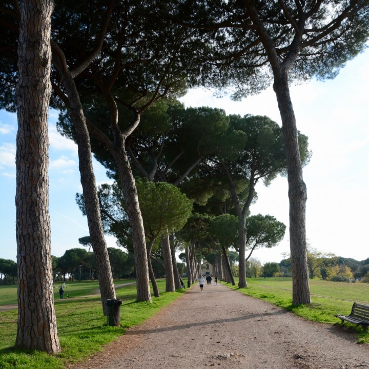 Rome with kids park villa doria pamphili pine alley