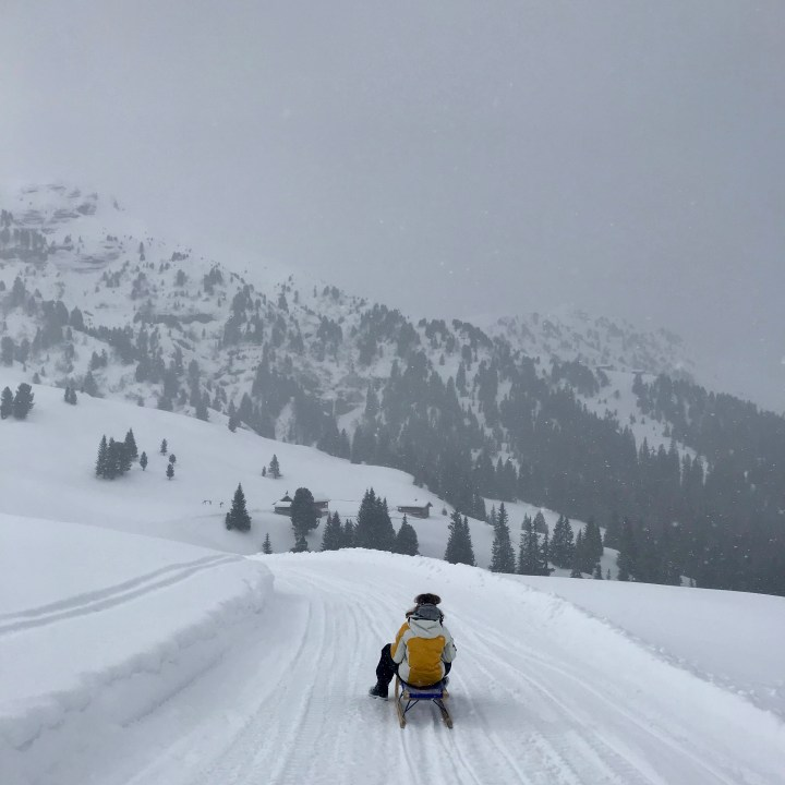 seiser alm skiing with kids sledging