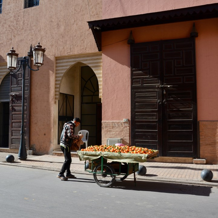 Morocco with kids tips fruit