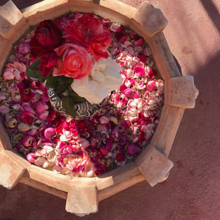 Morocco with kids rose petals