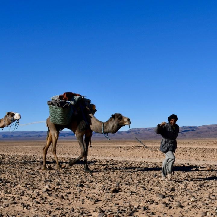 sahara desert erg chigaga with kids nomad