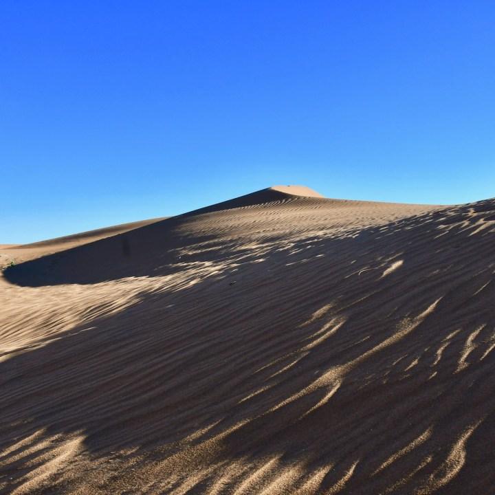 sahara desert erg chigaga with kids wavy mounds