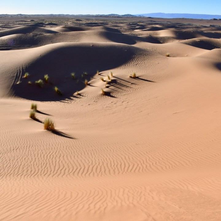 sahara desert erg chigaga with kids desert views