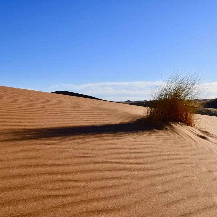 sahara desert erg chigaga with kids shadows