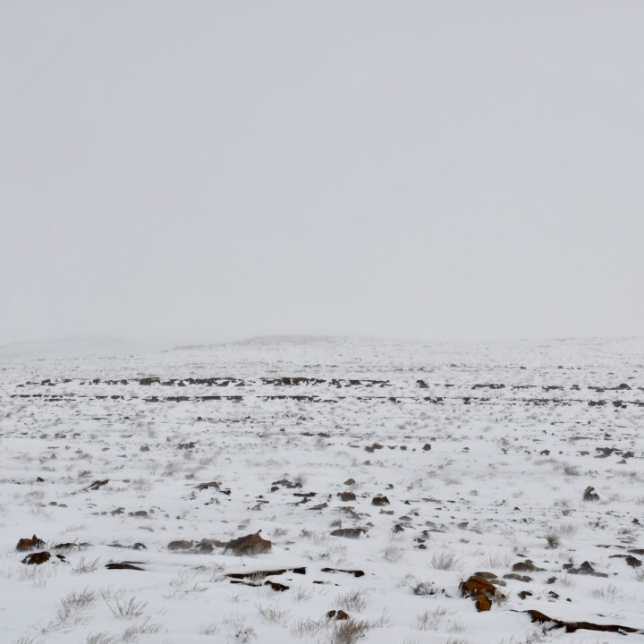 snow in the desert Morocco thick fog