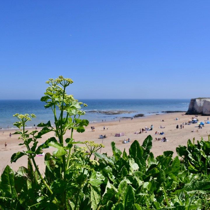 Broadstairs, United Kingdom | Discovering the Sandy Beaches Along the Kent Coast