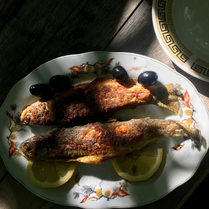 family travel with kids Georgian food grilled trout