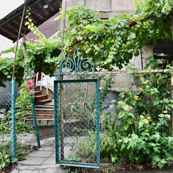 Tbilisi with children flower garden