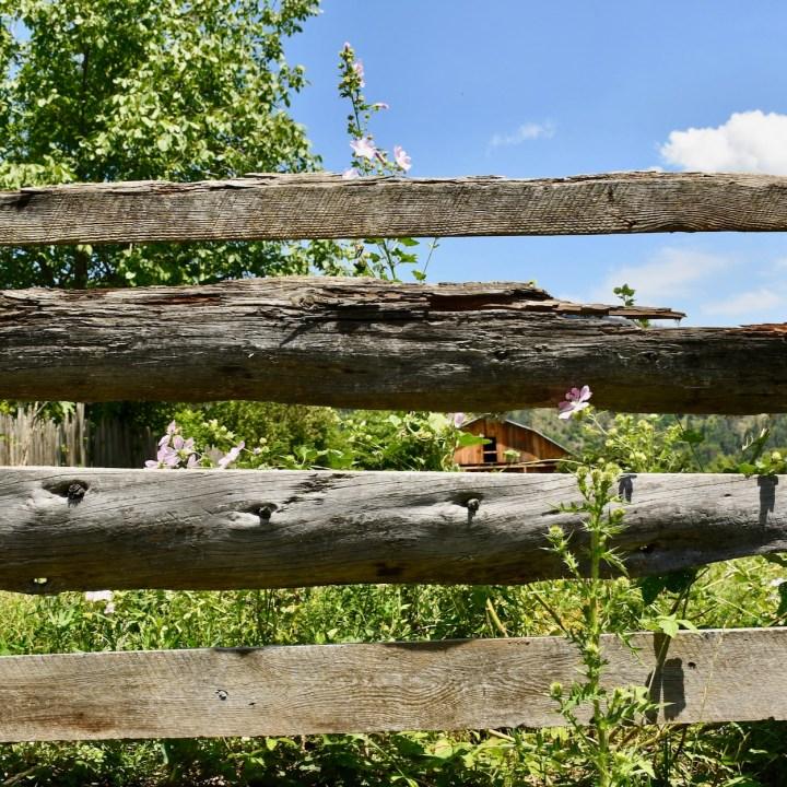 Borjomi with kids adventure trail fence