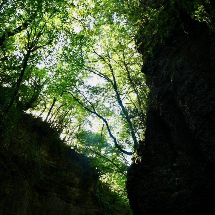 Martvili Canyon Georgia with kids looking up