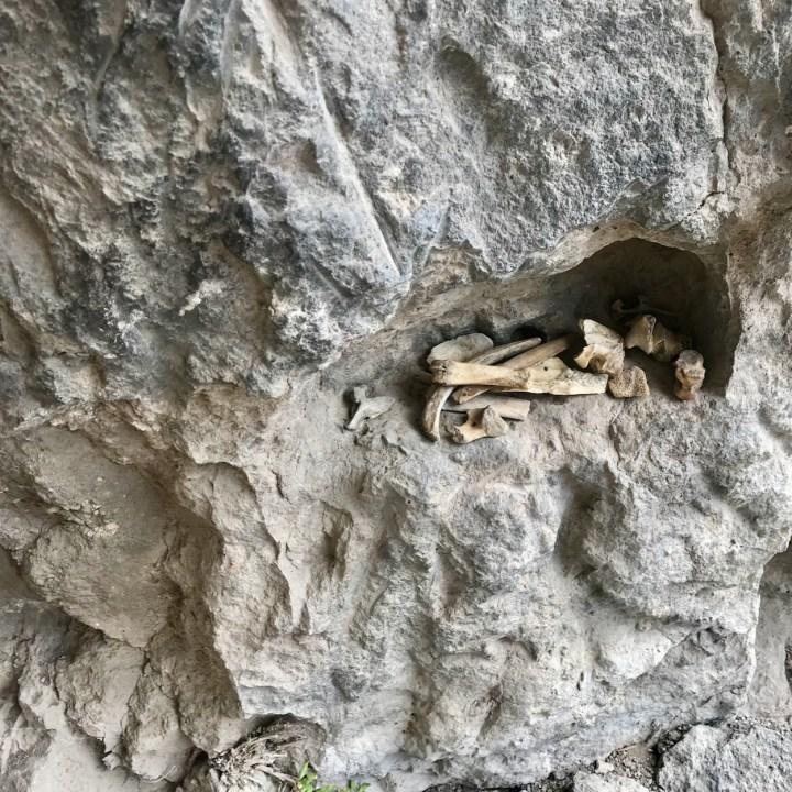 Khertvisi Georgia castle bones