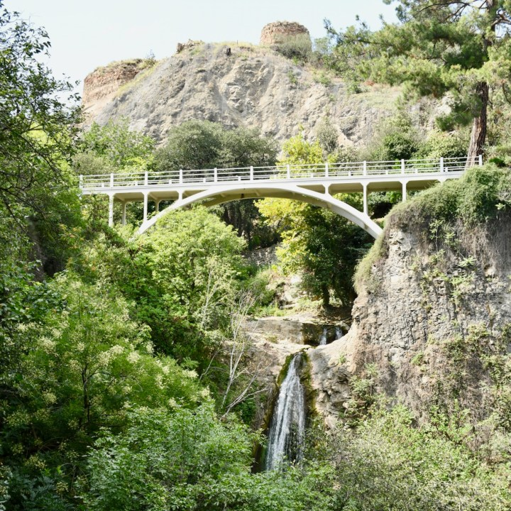 Tbilisi botanical garden Queen Tamar bridge