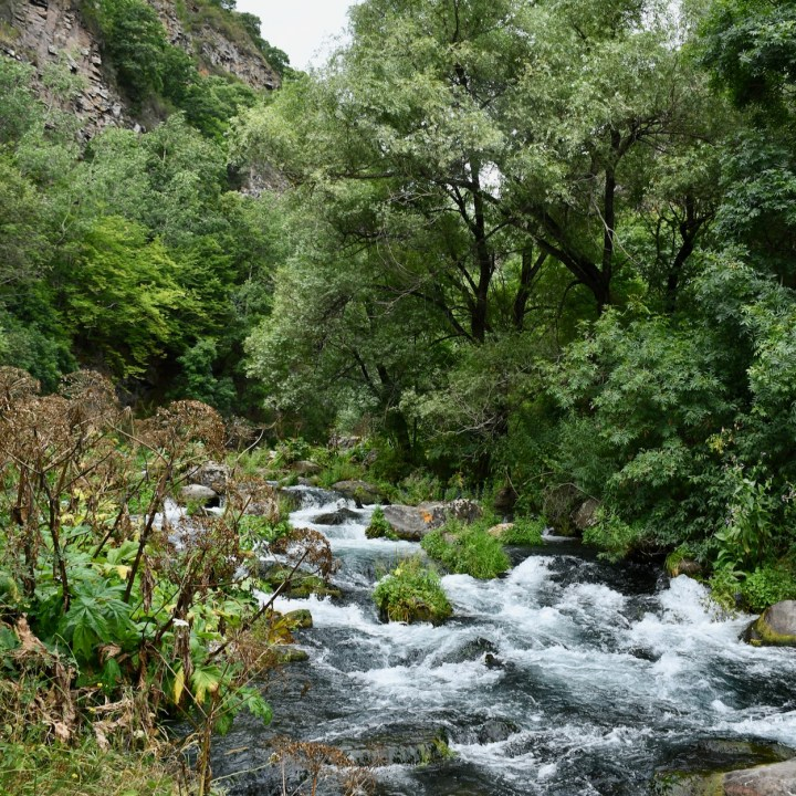 Dashbashi canyon mountain stream