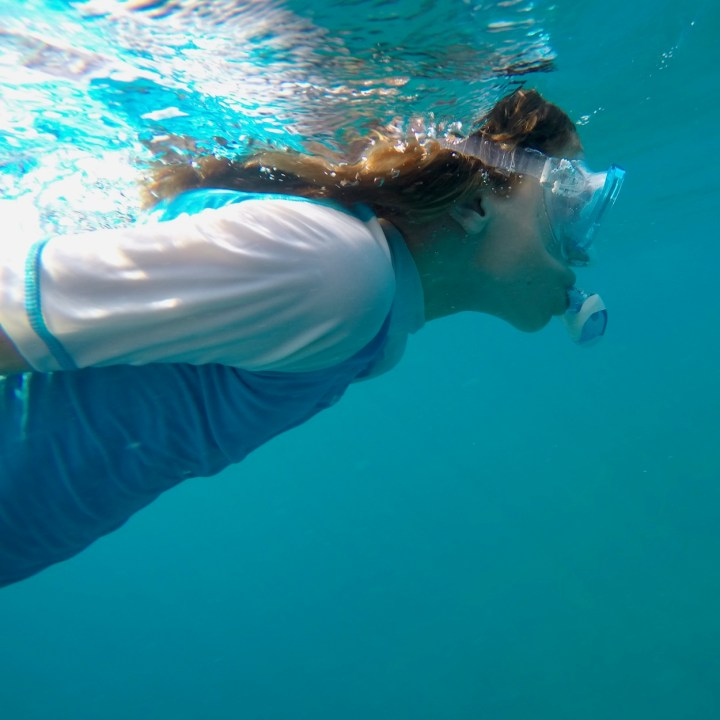 Lux South Ari snorkel tour