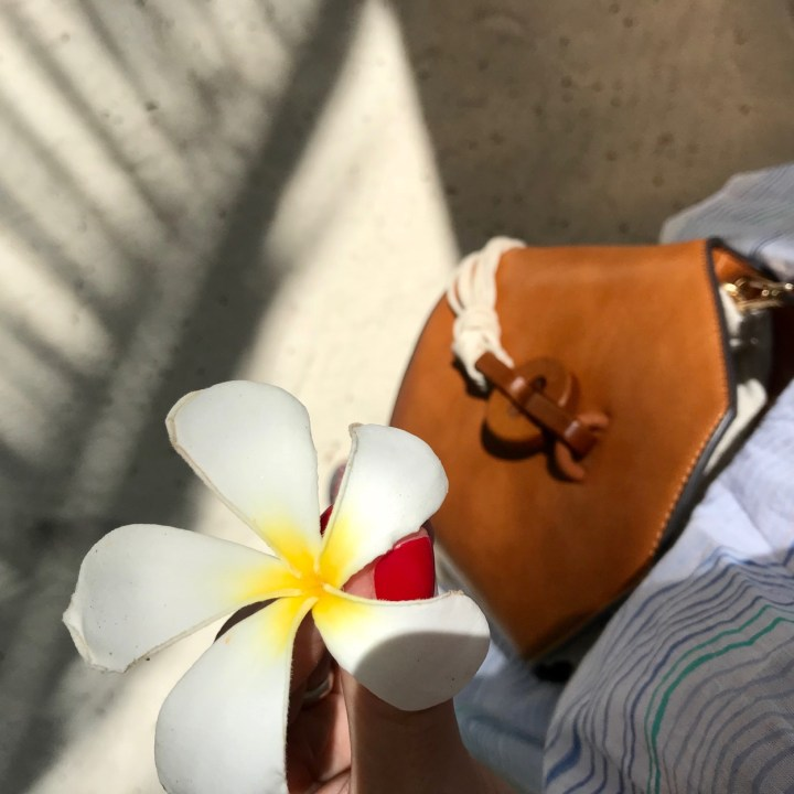 Lux South Ari frangipani