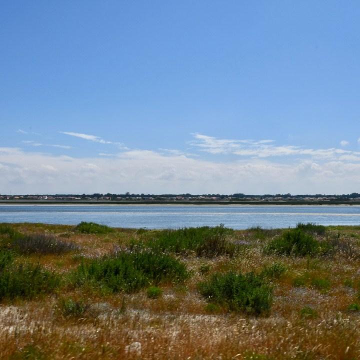 Praia da Vagueira lagoon
