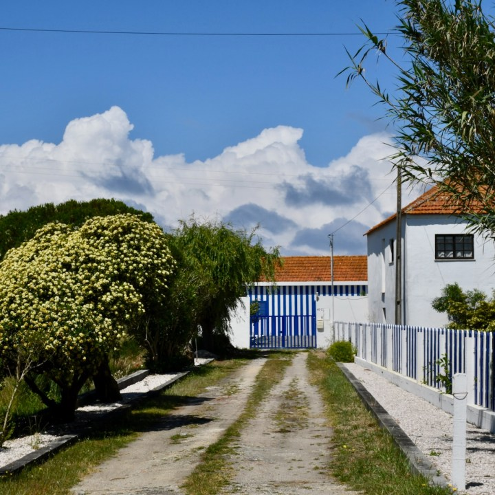 Praia da Vagueira country house