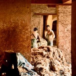 Fez Ain Azliten tannery wool