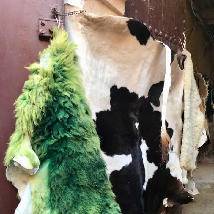 Fez Ain Azliten tannery animal carpets