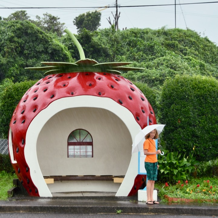 strawberry bus stop Japan