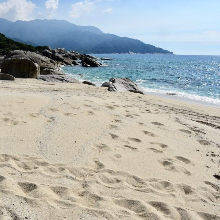 Yakushima turtle beach