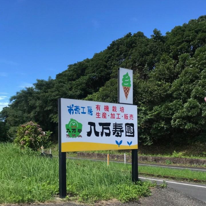 Hachimanjyu Chaen tea farm Yakushima