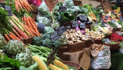 Organic vegetables for Food Lovers of London