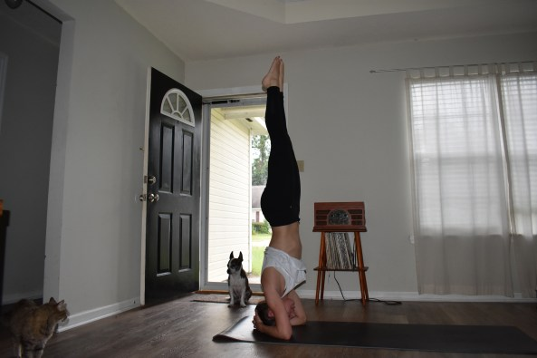 How to do a headstand in yoga