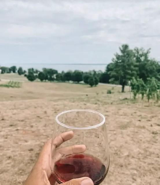 Old Mission Wine Tasting- Wine