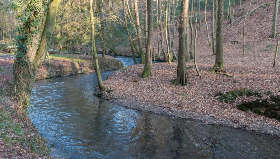 Murbach kurz hinter der Wietschen Mühle