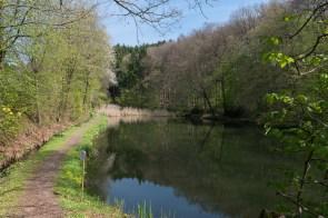 Fischteich bei Wersbachklinik