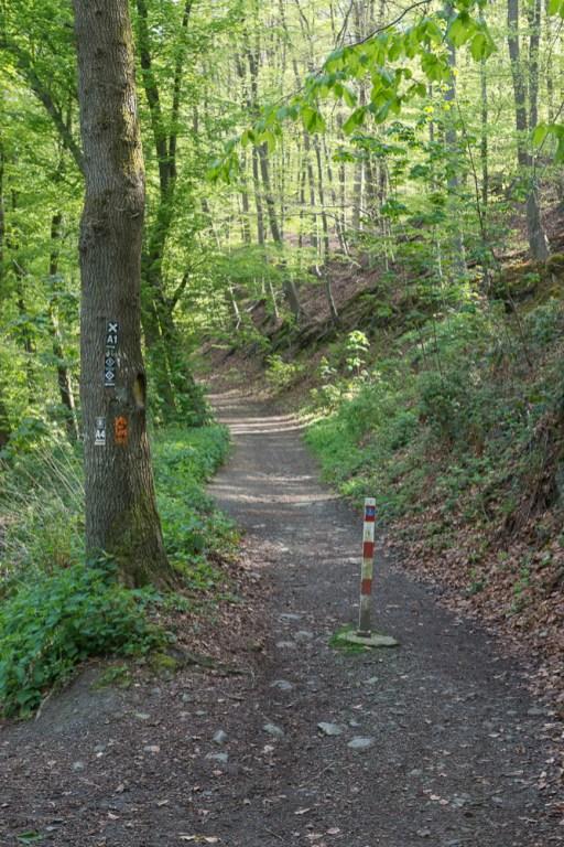 Aufstieg zur Sengbachtalsperre