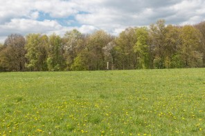 Rund um Dabringhausen-19