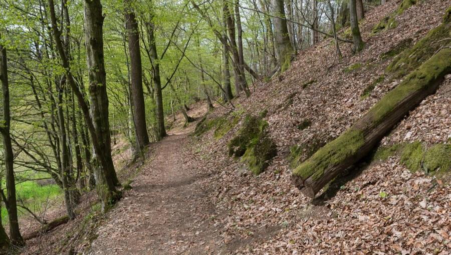 Rund um Dabringhausen-4