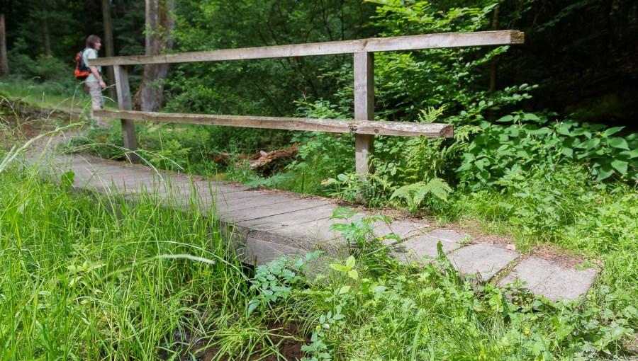 Bächlein mit Brücke