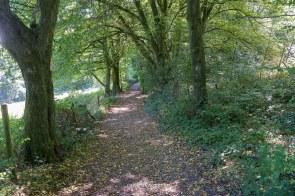 Wanderweg im Schatten
