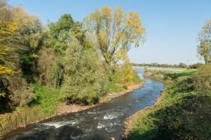 Kurz vor der Mündung in den Rhein