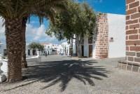 Palmen im Zentrum von Teguise