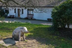 Hofhundersatz