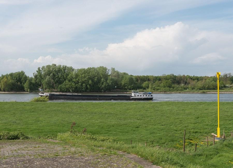 Rhein bei Stürzelberg
