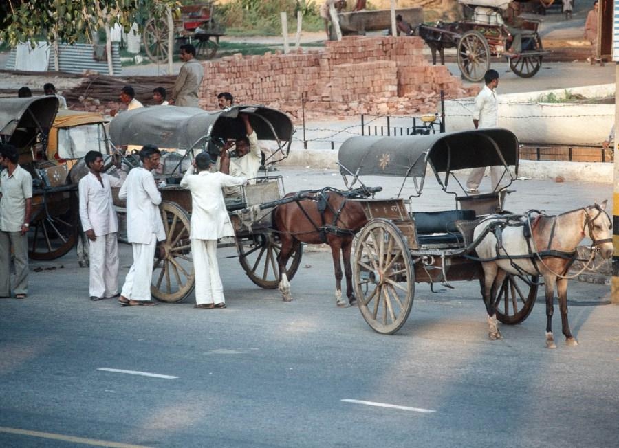 Pferdekutschen in Delhi