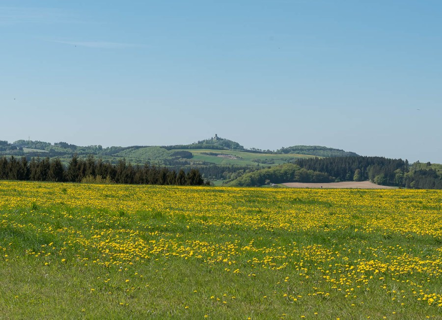 Nürburg in der Ferne