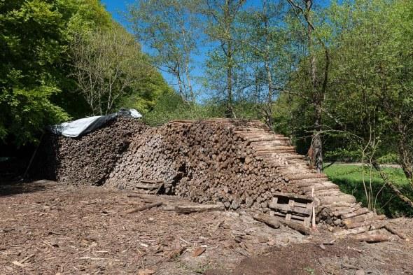 Hier wurde Forstwirtschaft getrieben