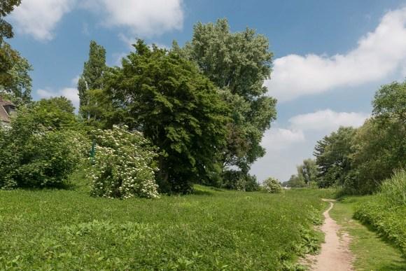 Unser Wanderweg am Rhein