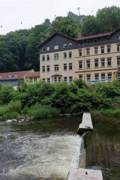 Kleiner Waldkater / Jugendherberge