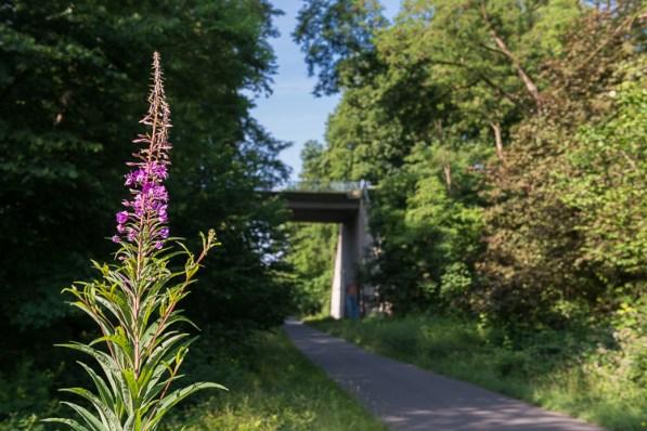 Brücke kurz vor Burscheid